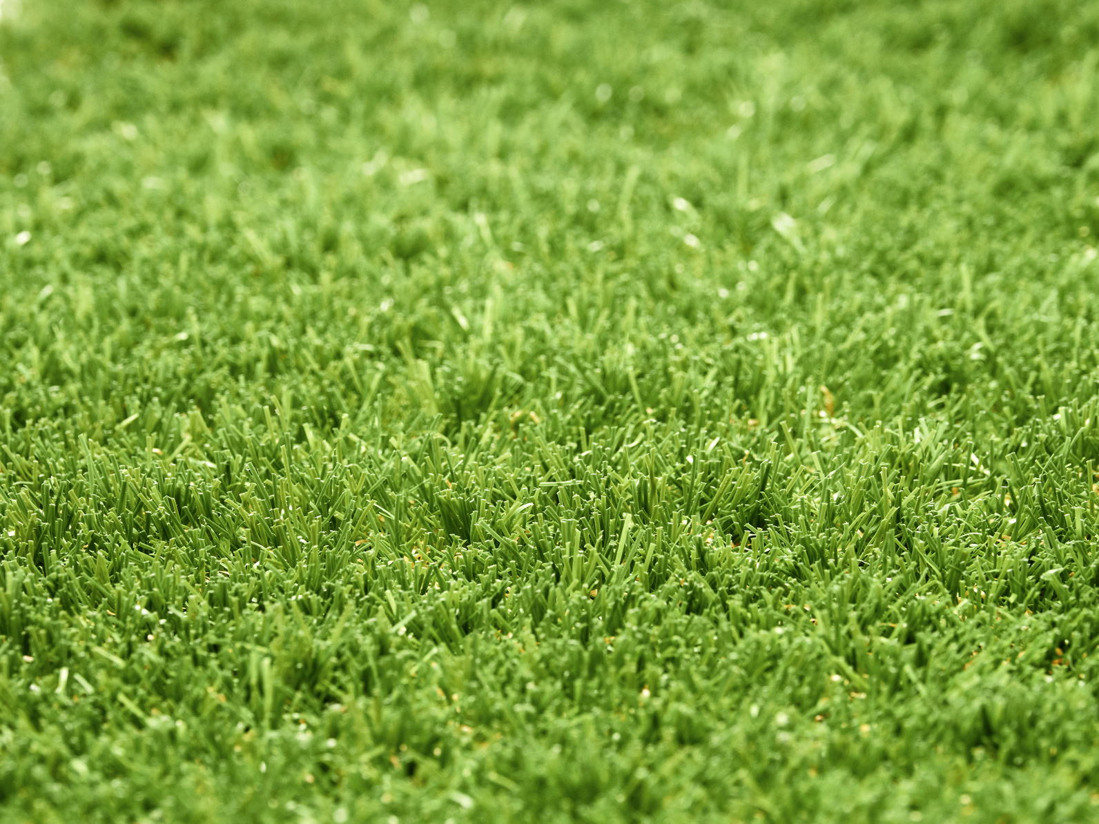 Recents post multiturf sport the advantages and disadvantages of a diy artificial lawn at home solutioingenieria Image collections